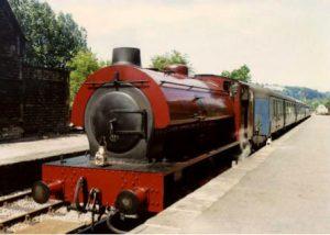 royal pioneer peak train